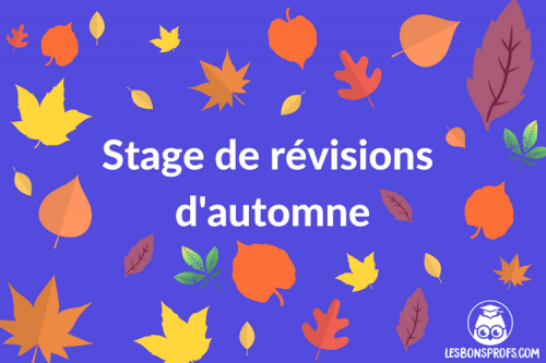 stage_revisions_profs